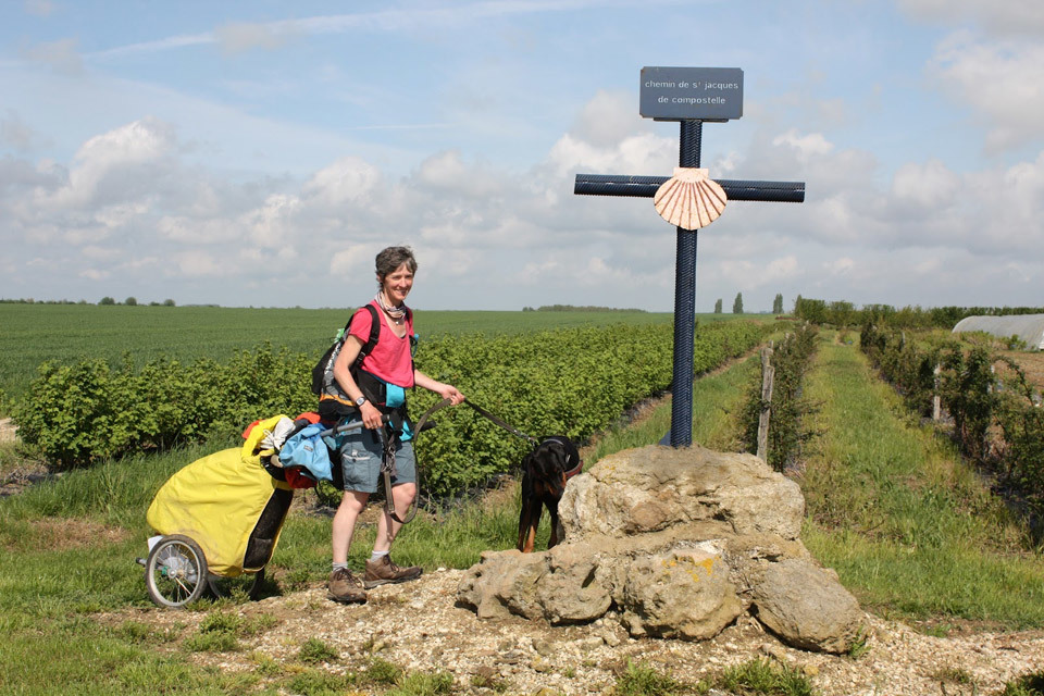 Hiking the Camino with Two Dogs